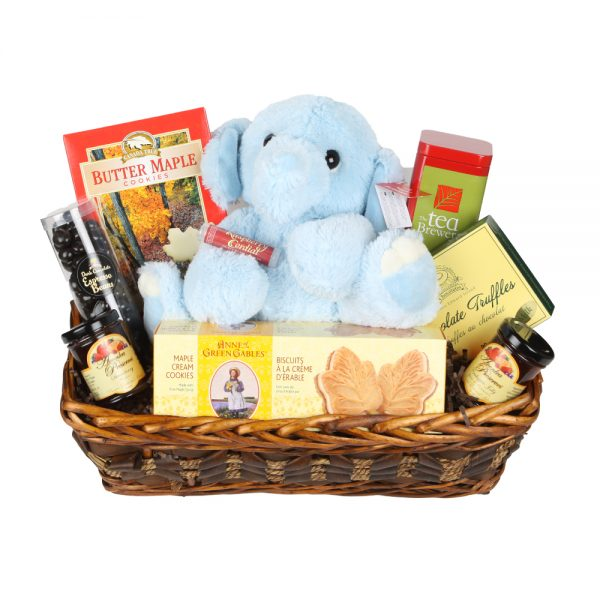 New Mom Basket Blue