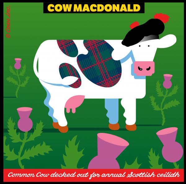 COW MACDONALD CLASSIC T IMAGE